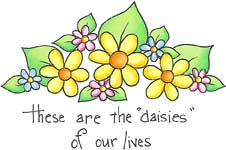 Daisies of Our Lives